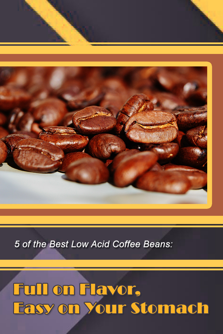 5 of the Best Low Acid Coffee Beans: Full on Flavor, Easy on Your Stomach